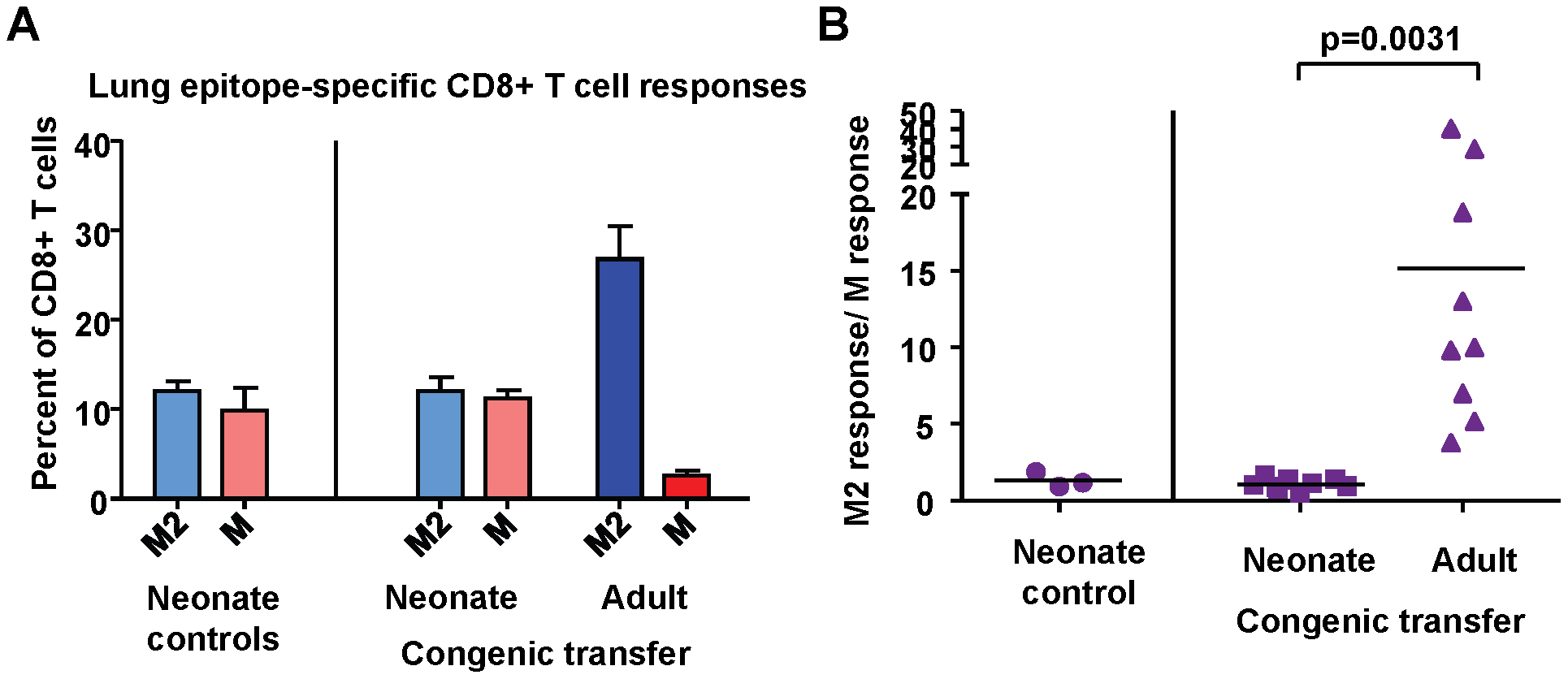 Intrinsic CD8+ T cell factors contribute to epitope hierarchy post-infection.