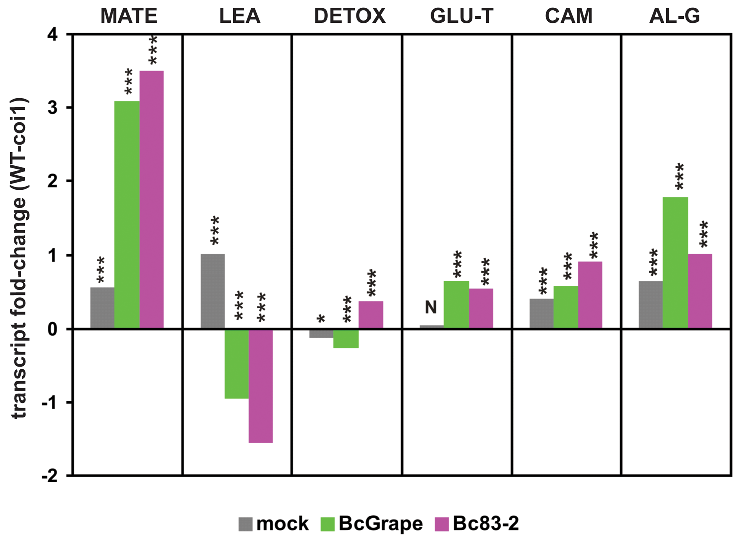 Genotype and <i>B. cinerea</i> effects on transcription of co-regulated genes and biosynthetic pathways.