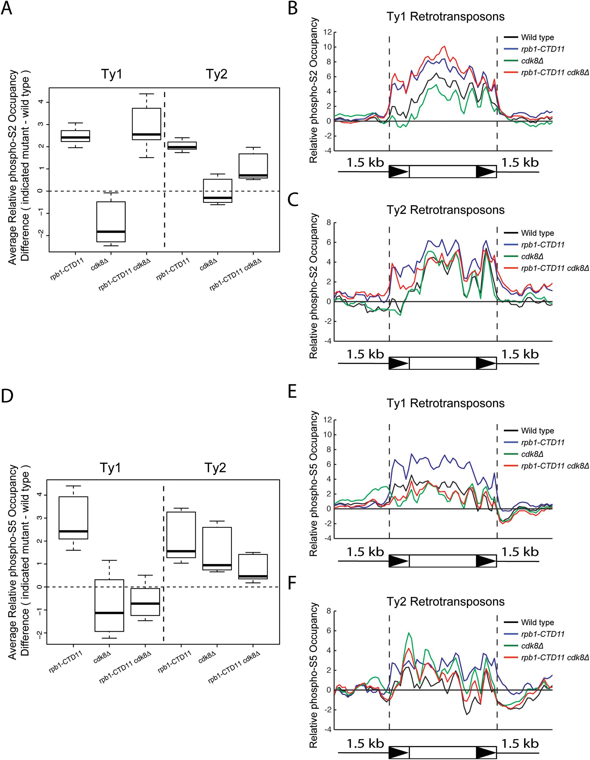 Loss of <i>CDK8</i> decreased the elevated RNAPII-CTD S<sub>5</sub> phosphorylation levels at Ty1 retrotransposons observed in the <i>rpb1-CTD11</i> mutant.