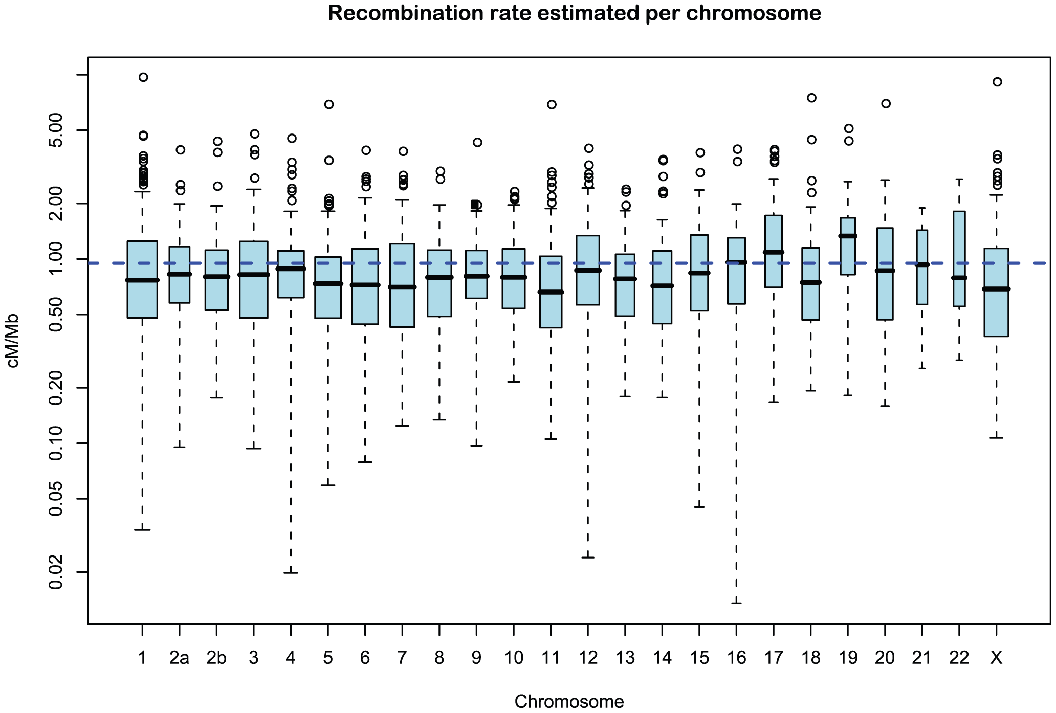 Distribution of recombination rate estimates for each chromosome.