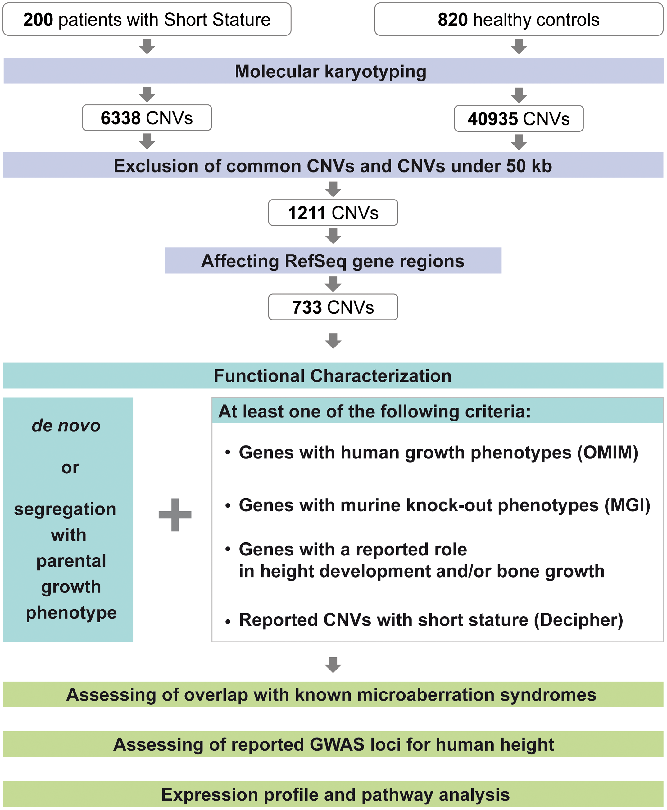 CNV discovery and characterization.