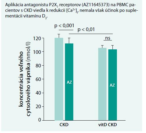Graf 5A. Funkčnosť a expresia P2X7 receptorov [12,17]