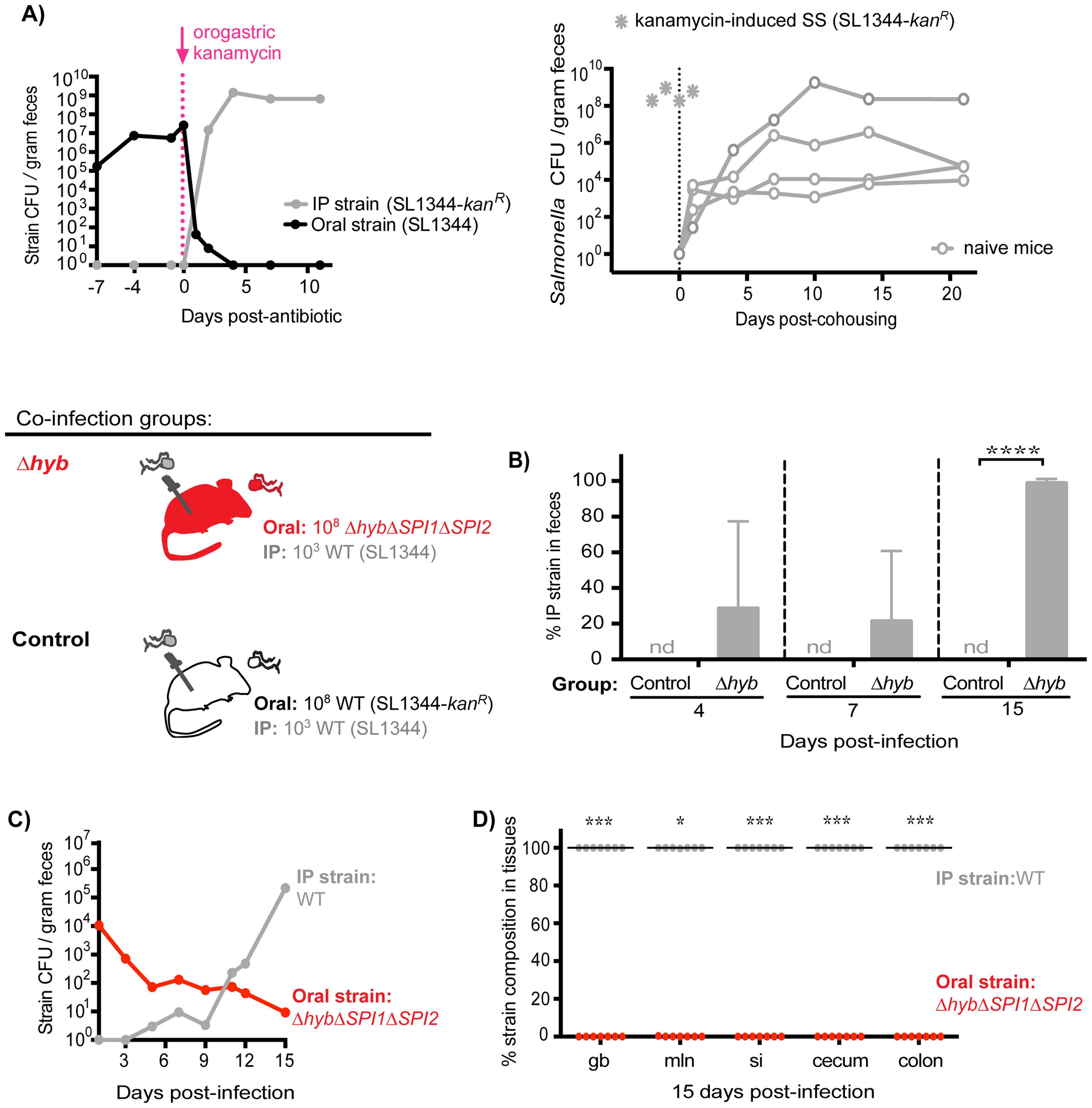 Inhibitory priority effects arise early during infection and are facilitated by <i>Salmonella</i> hydrogenase.