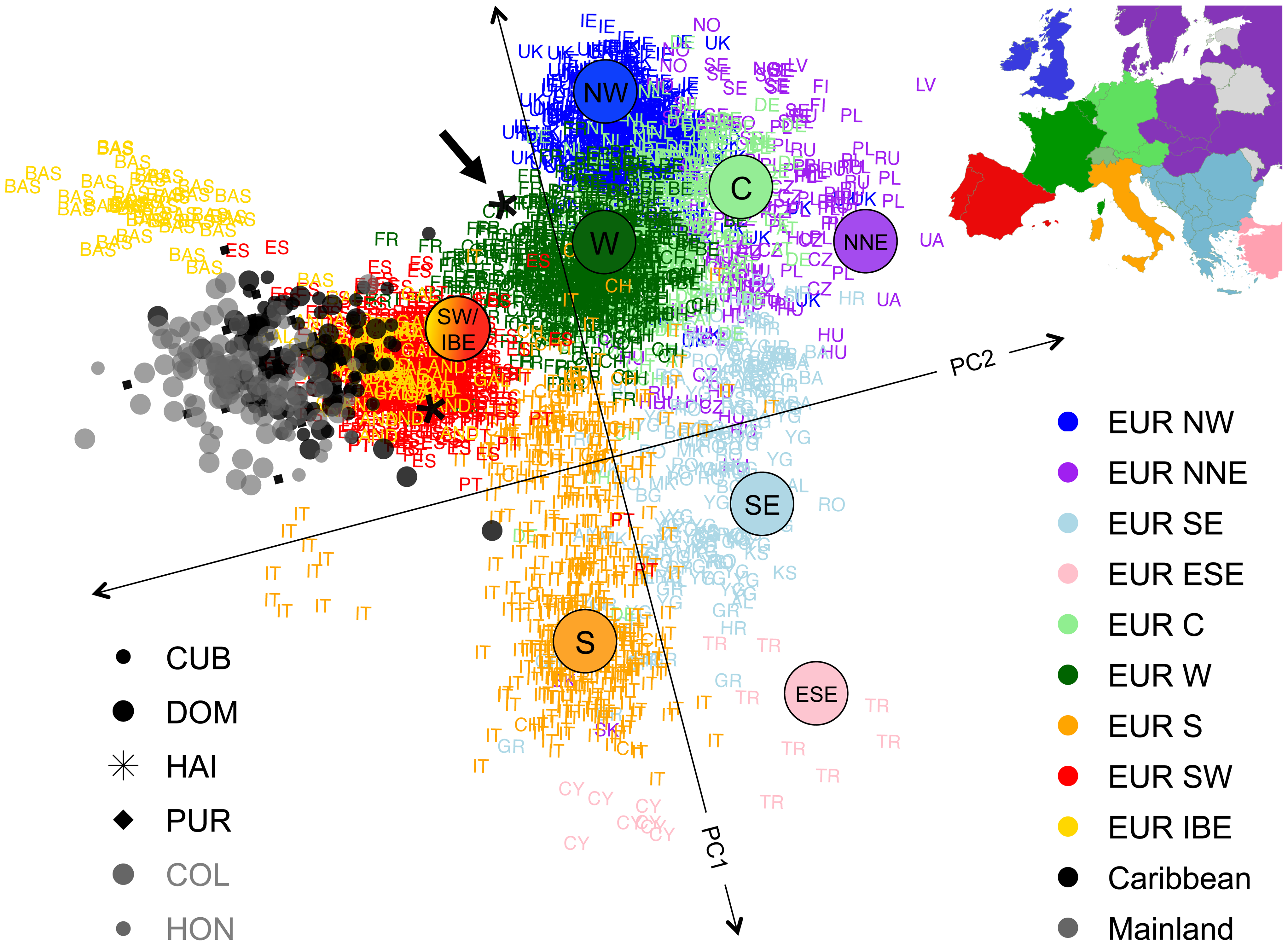Sub-continental origin of European haplotypes derived from admixed genomes.