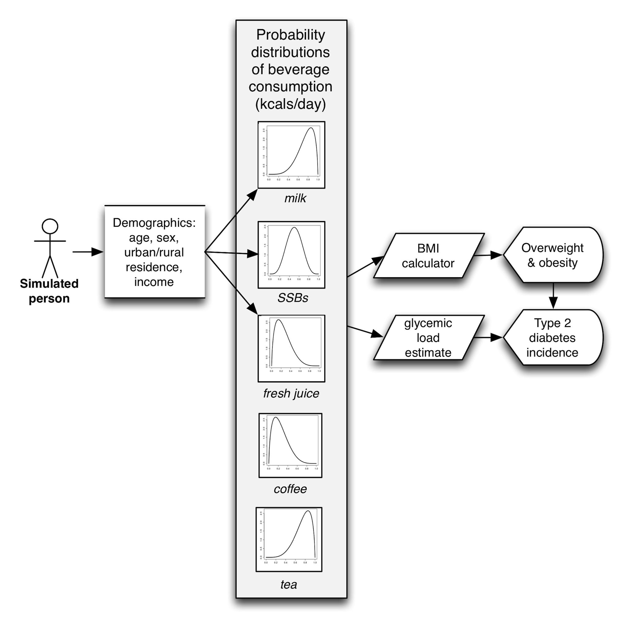 Model diagram.