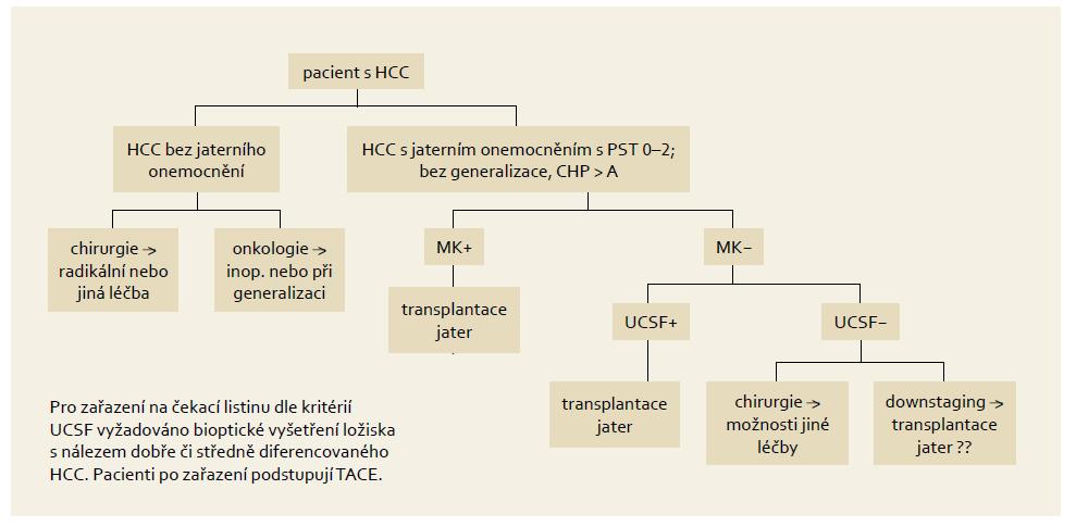 """Indikační schéma pro zařazení nemocného na """"waiting list"""" s HCC v IKEM. Fig. 2. Indication criteria for including a patient on the HCC """"waiting list"""" in IKEM."""