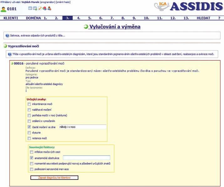 Struktura ošetřovatelské diagnózy v elektronické dokumentaci