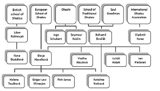 Schéma návaznosti vzdělání lektorů shiatsu.