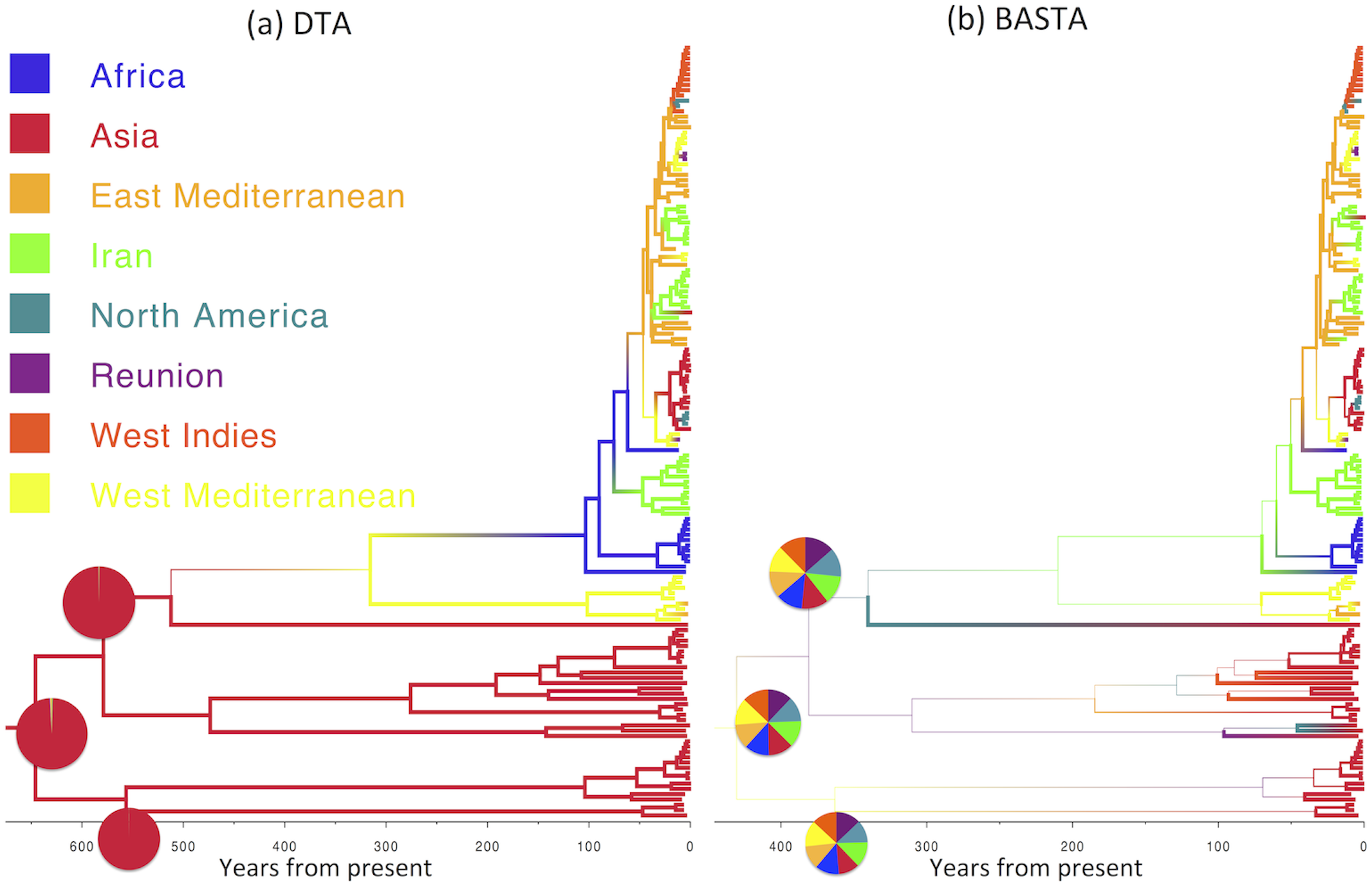 Inference of ancestral locations on the TYLCV dataset.