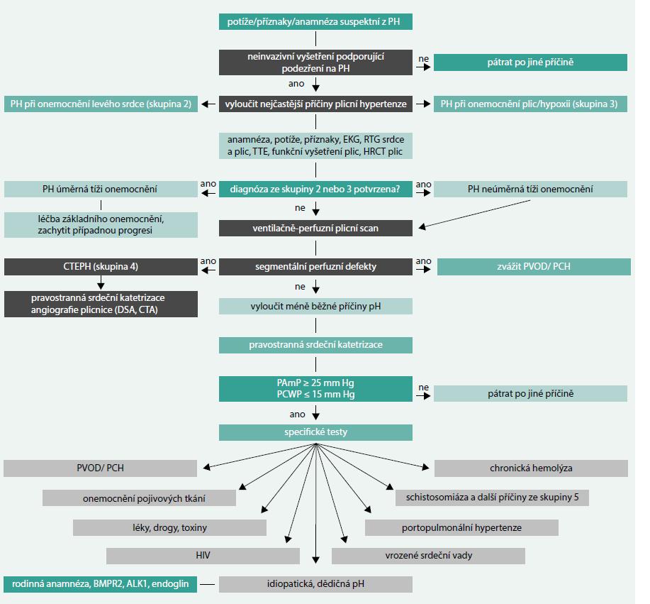 Schéma 2. Diagnostický algoritmus plicní hypertenze. Upraveno podle [1] pátrat