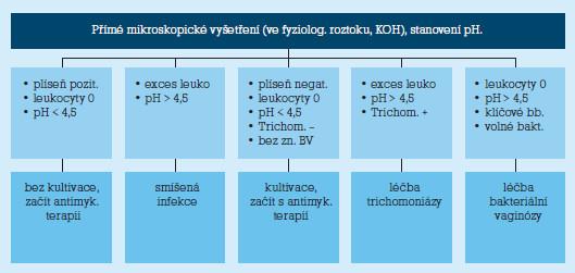 Diferenciální diagnostika symptomatické vaginální infekce [2].