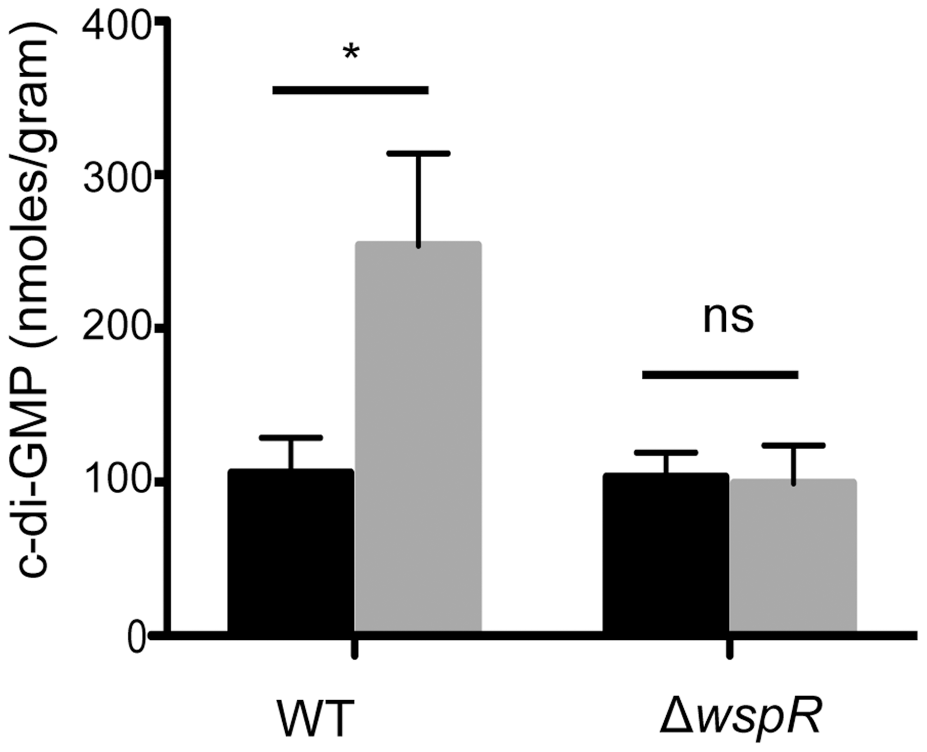 Ethanol increases c-di-GMP levels in <i>P. aeruginosa</i> strain PA14 WT but not in a Δ<i>wspR</i> mutant.