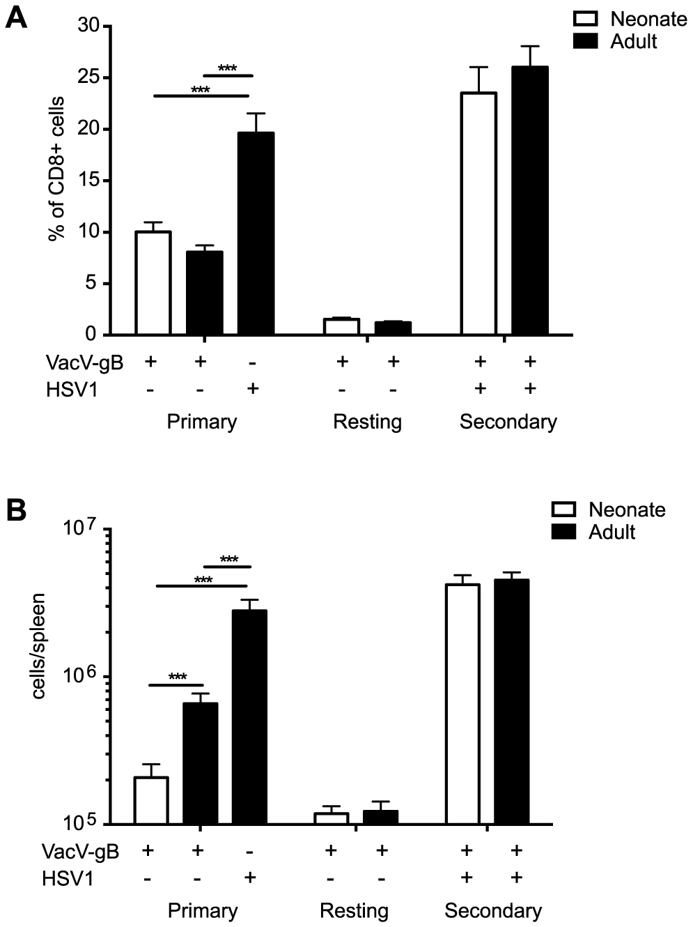 Magnitude of primary and secondary gB-8p-specific CD8+ T cell responses.