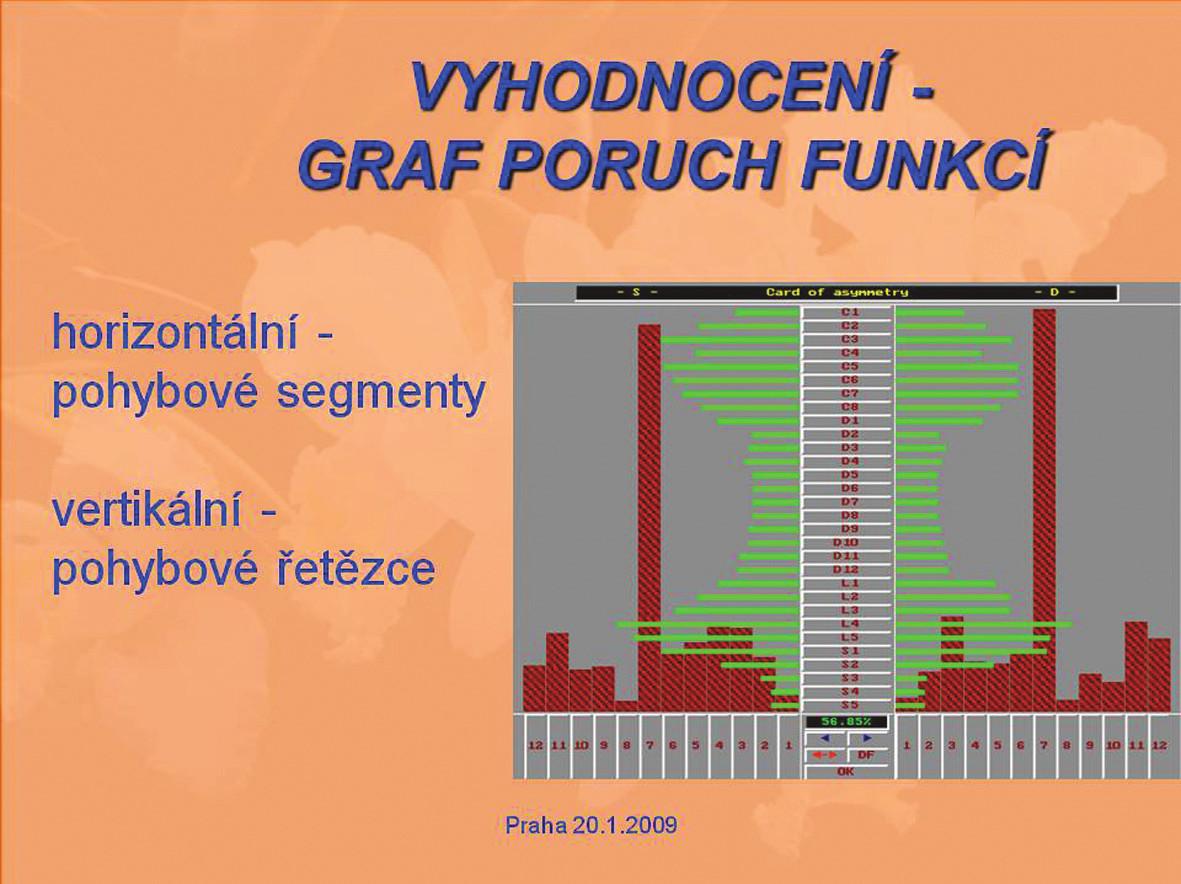 Vyhodnocení - graf poruch funkcí.