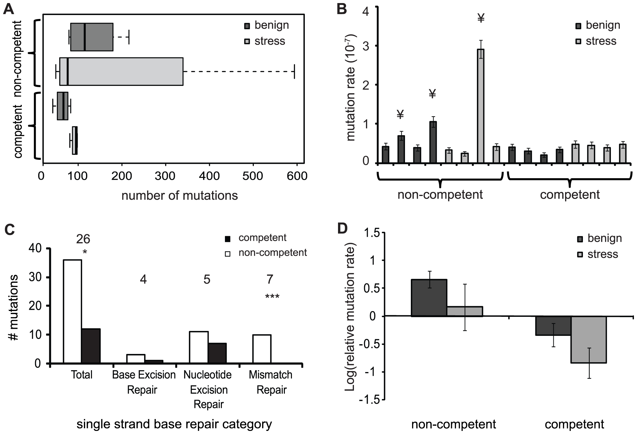Number of mutations and mutation rates of evolved populations.
