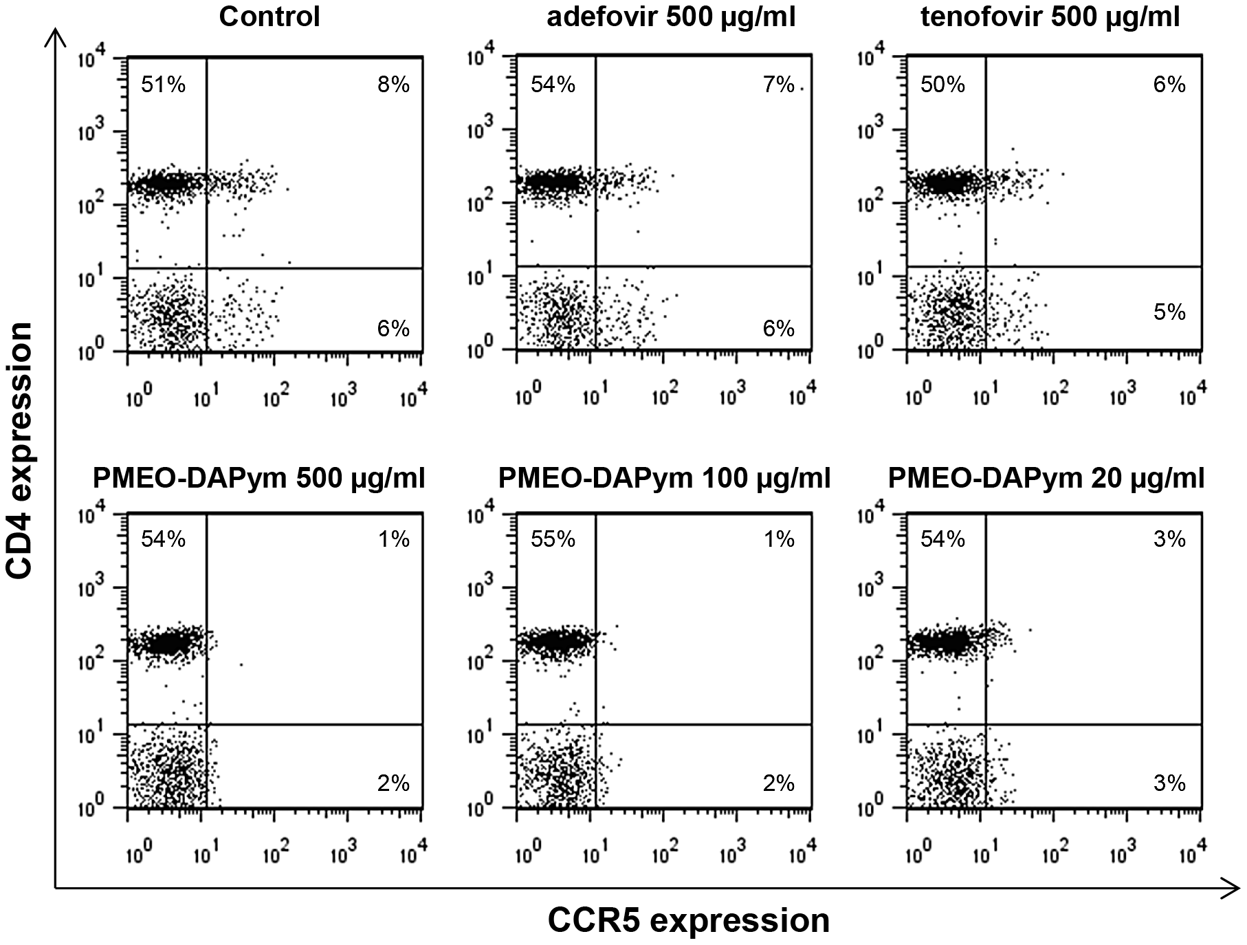 Expression of the HIV-1 coreceptor CCR5 on PBMCs after treatment with adefovir, tenofovir, or PMEO-DAPym.