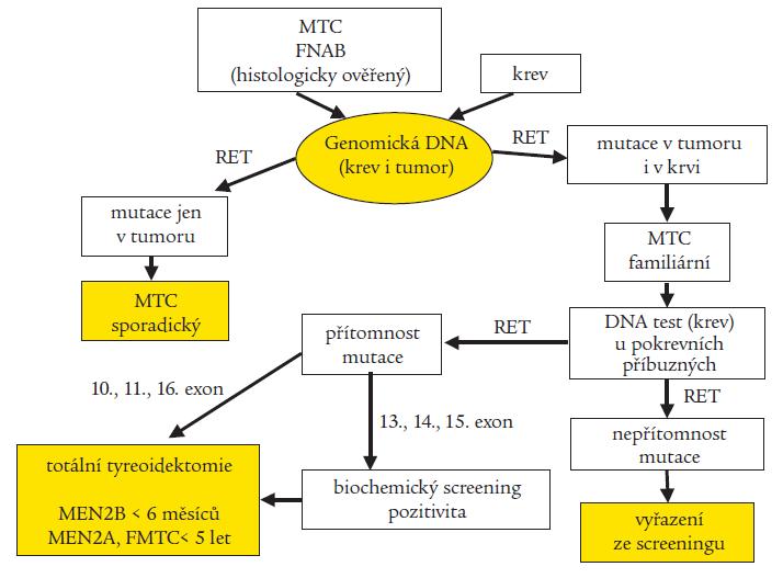 Optimální schéma molekulárně genetické diagnostiky RET proto-onkogenu u medulárního karcinomu štítné žlázy (MTC) a syndromů MEN2 (FNAB – biopsie tenkou jehlou)