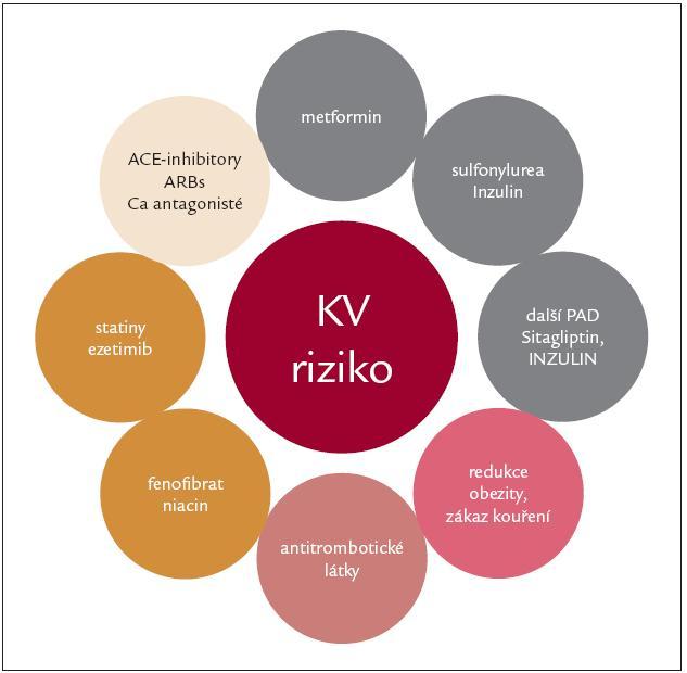 Komplexní přístup ke snížení KV rizika.