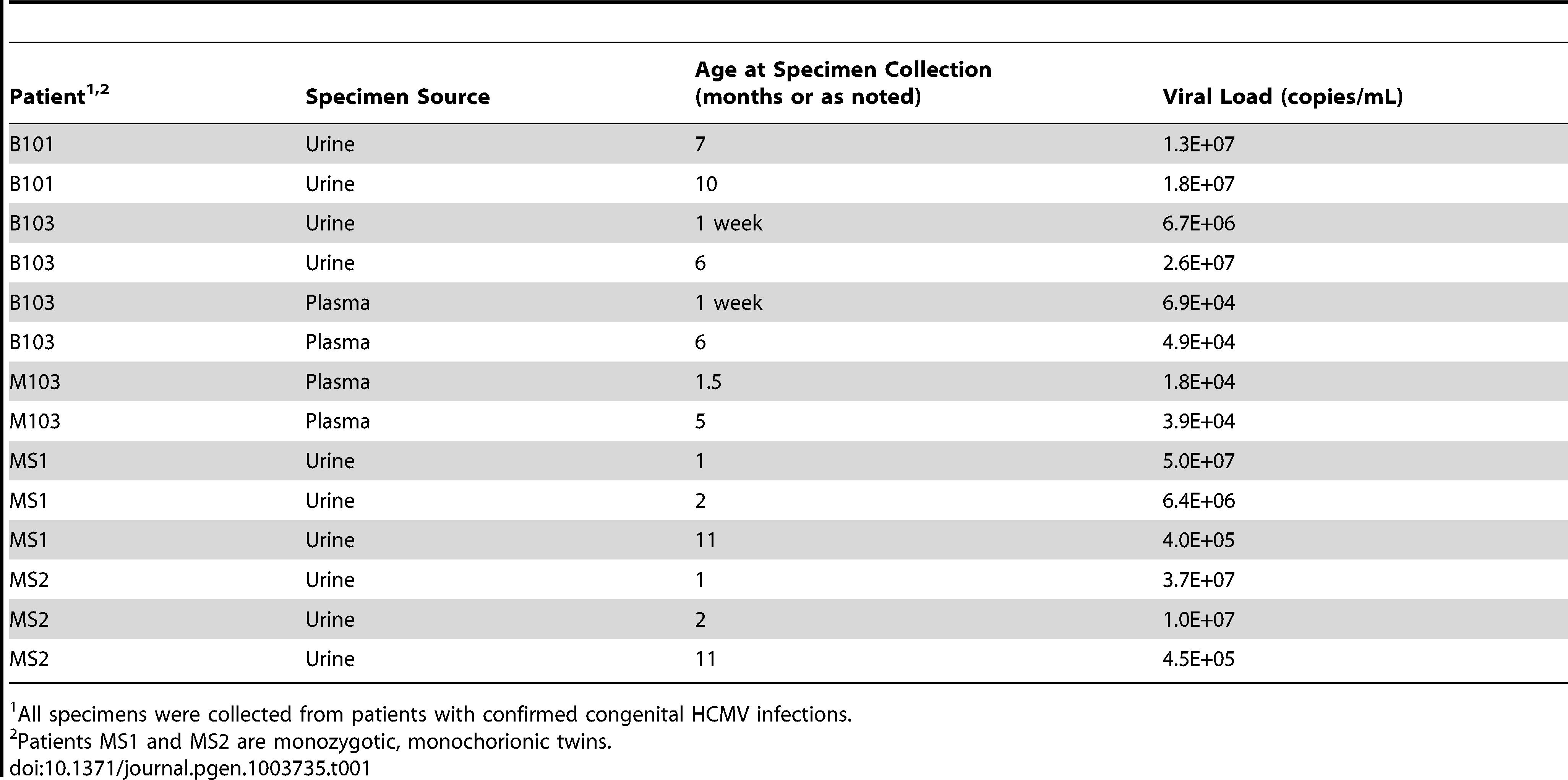 Patient and specimen information.