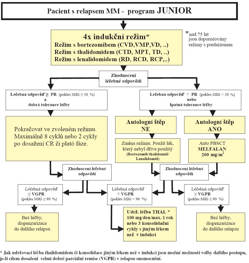 Schéma 3. Léčba mnohočetného myelomu pro pacienty do 65 let – léčba relapsu.