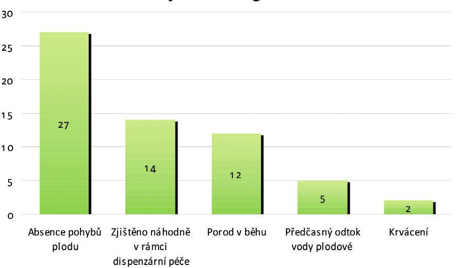 Počet zastoupených případů v souboru podle příjmové diagnózy