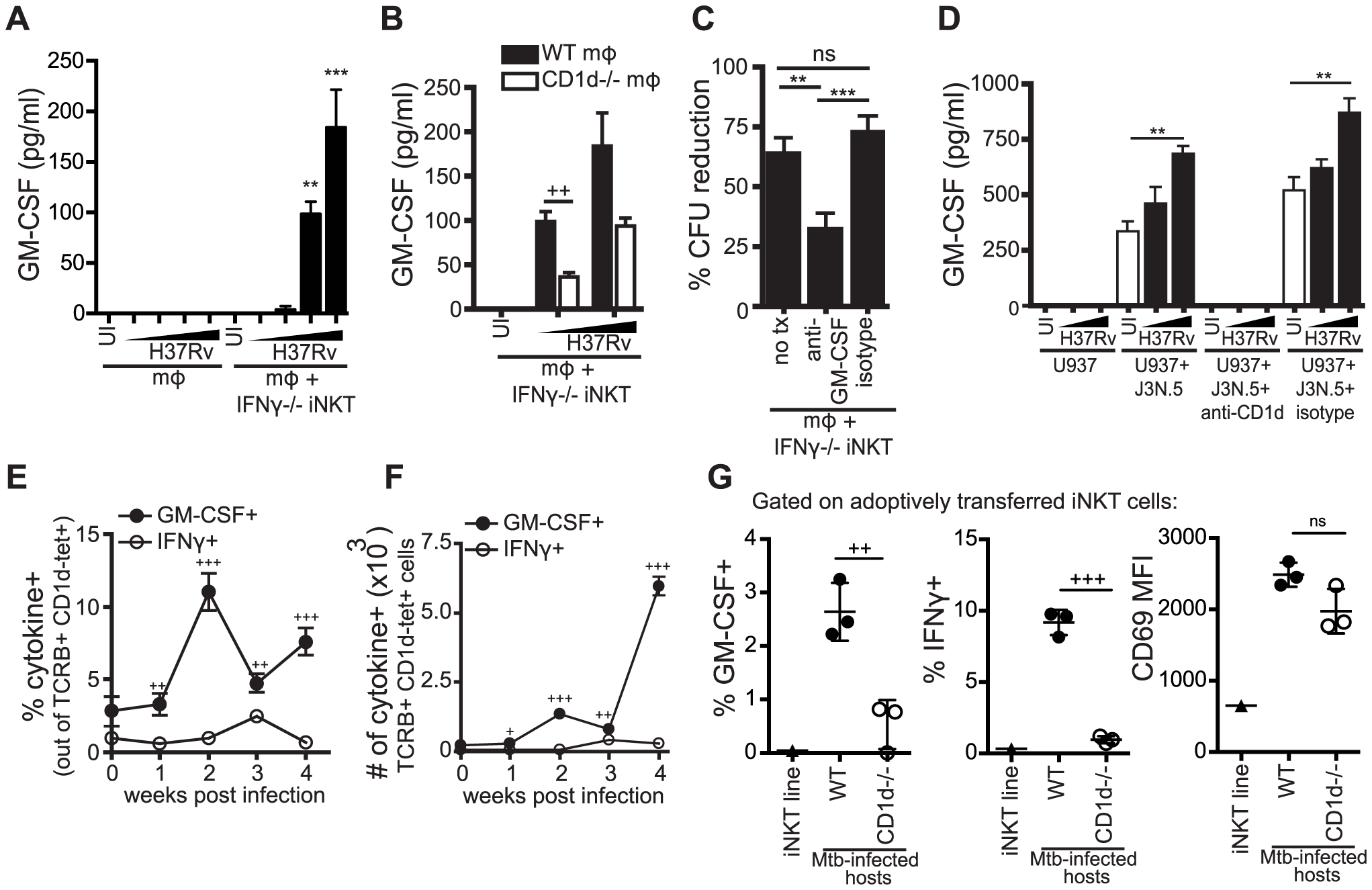 iNKT cells produce GM-CSF during Mtb infection in a CD1d-dependent manner and it is critical for controlling Mtb growth.