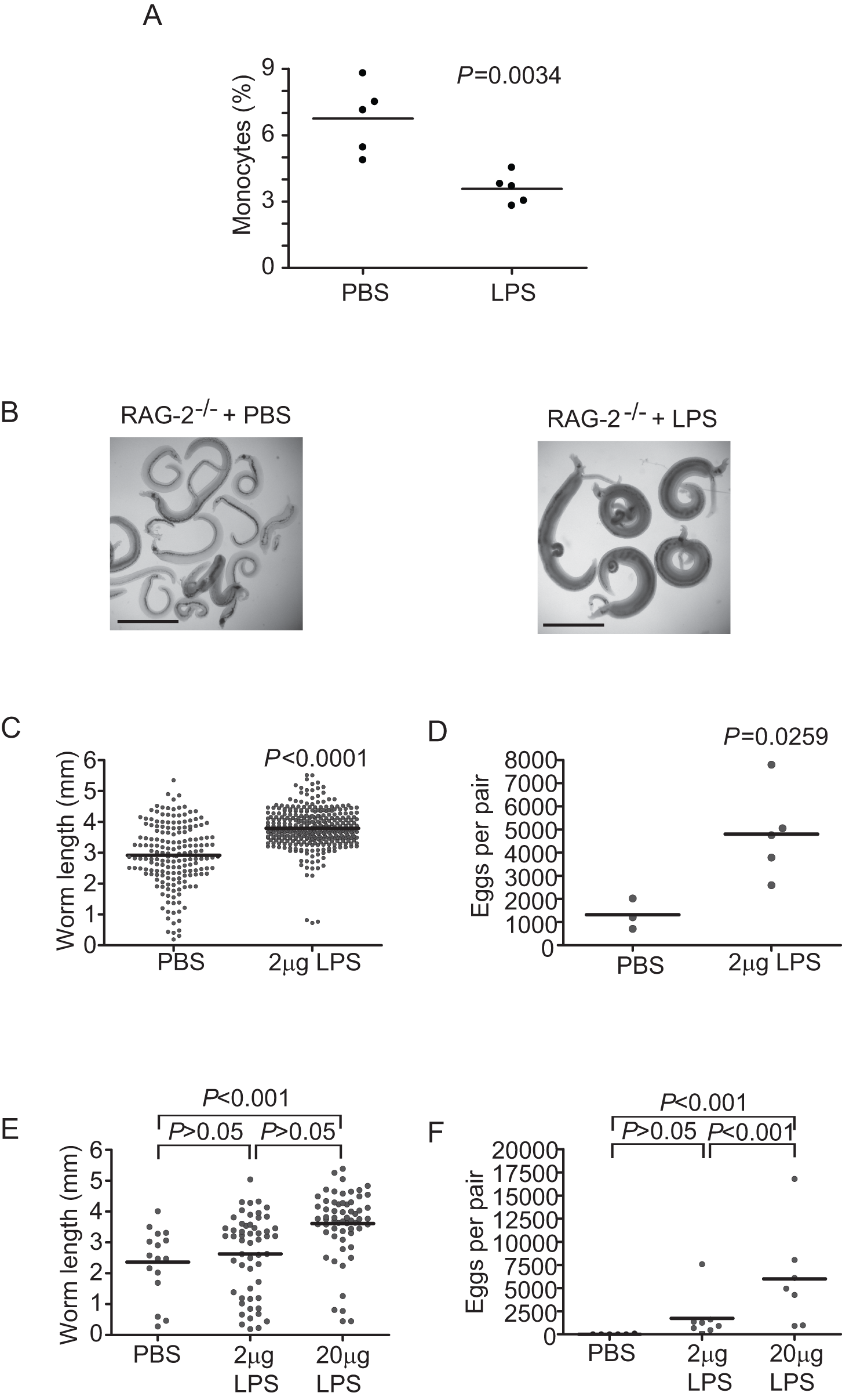 TLR ligand-induced maturation of mononuclear cells facilitates <i>S. mansoni</i> development.