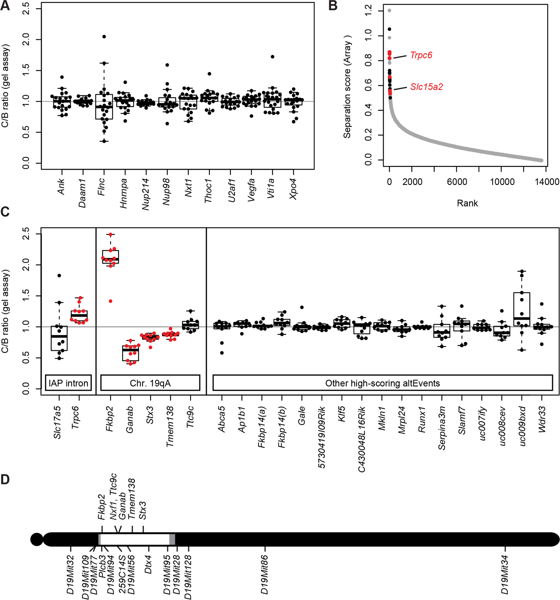 Nxf1 alleles do not affect alternative processing at non-IAP sites.
