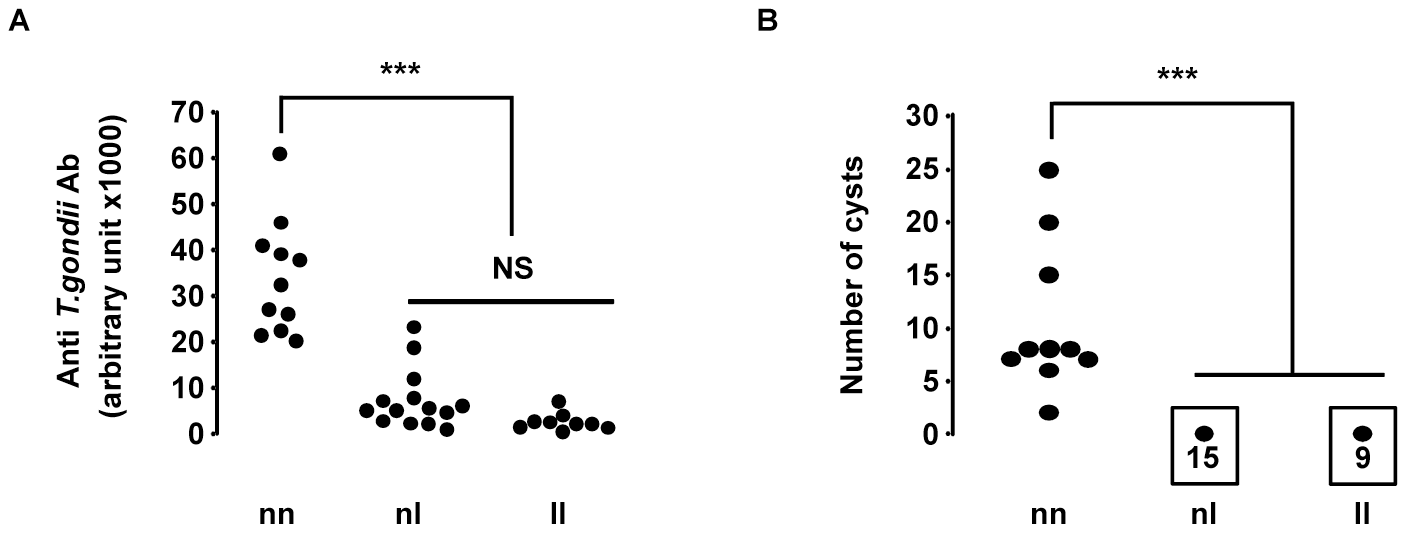 Susceptibility to <i>T. gondii</i> infection of (LOU X BN) F2 rats according to their genotype at the D10GF41 microsatellite marker.