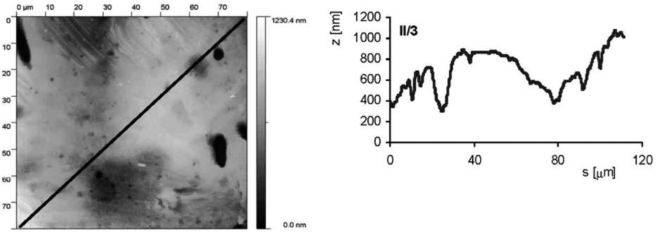 AFM vzorku II/3 (leštěný a leptaný s povrchovou ztrátou 0,03 mm). Snímek povrchu a jeho profil ve směru úhlopříčky, naznačené ve snímku, byl měřen pomocí AFMmikroskopu Explorer III (Veeco, Santa Barbara, Kalifornie,USA).