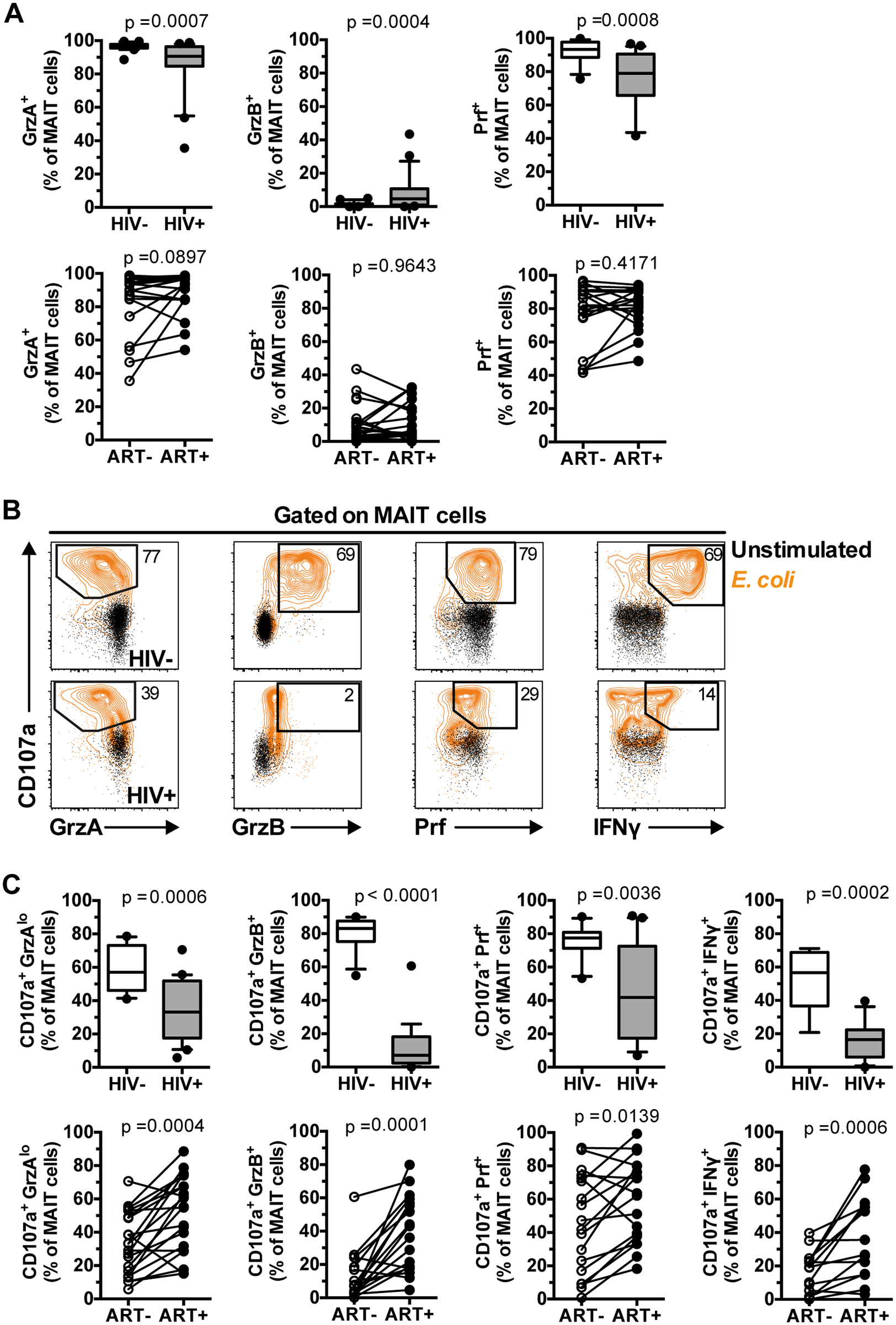 IL-7 arming of MAIT cells and MAIT cell cytotoxic capacity are impaired in chronic HIV-1 infection.