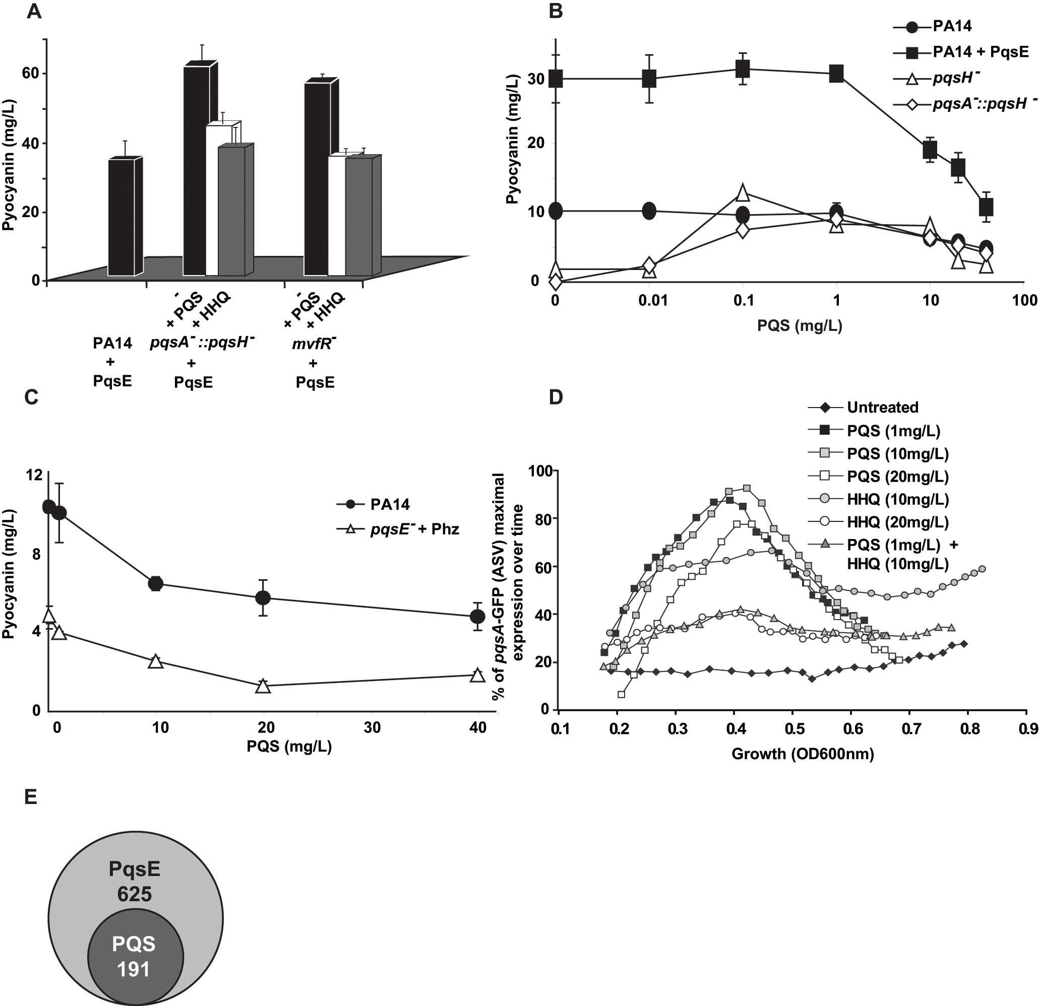 Negative homeostatic feedback regulation on MvfR regulon products and activity is mediated via cell-cell signaling molecule concentration.