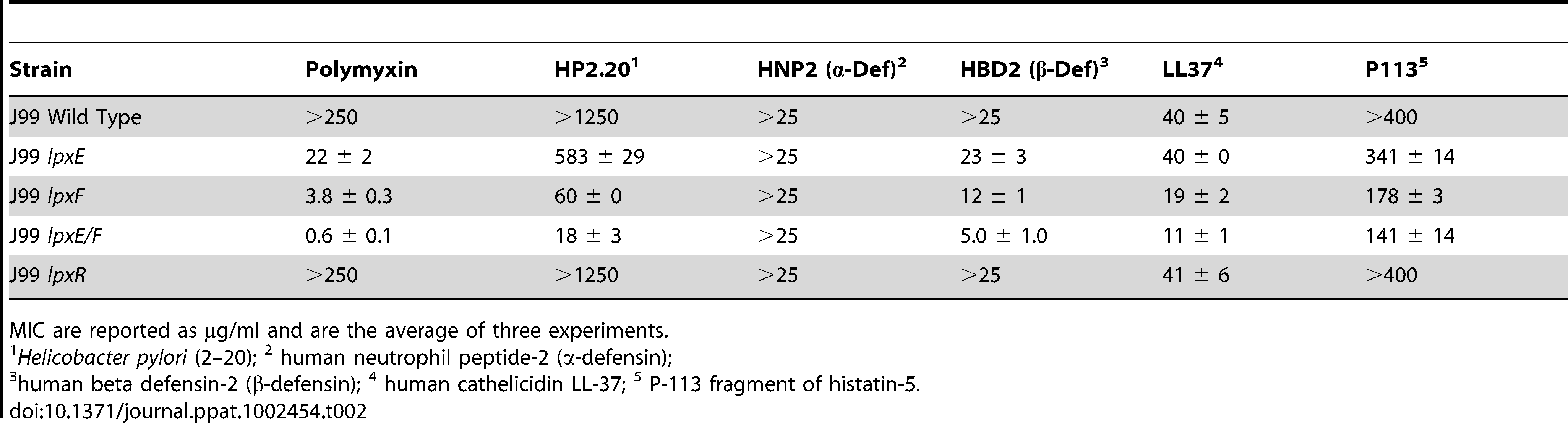 Minimal Inhibitory Concentrations (MIC) of cationic antimicrobial peptides against <i>H. pylori</i> strains.