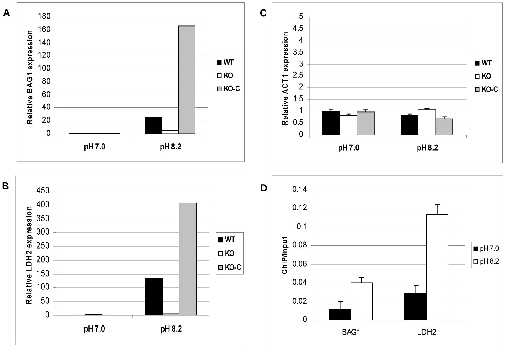 ΔGCN5-A parasites fail to up-regulate developmental genes in response to alkaline pH.