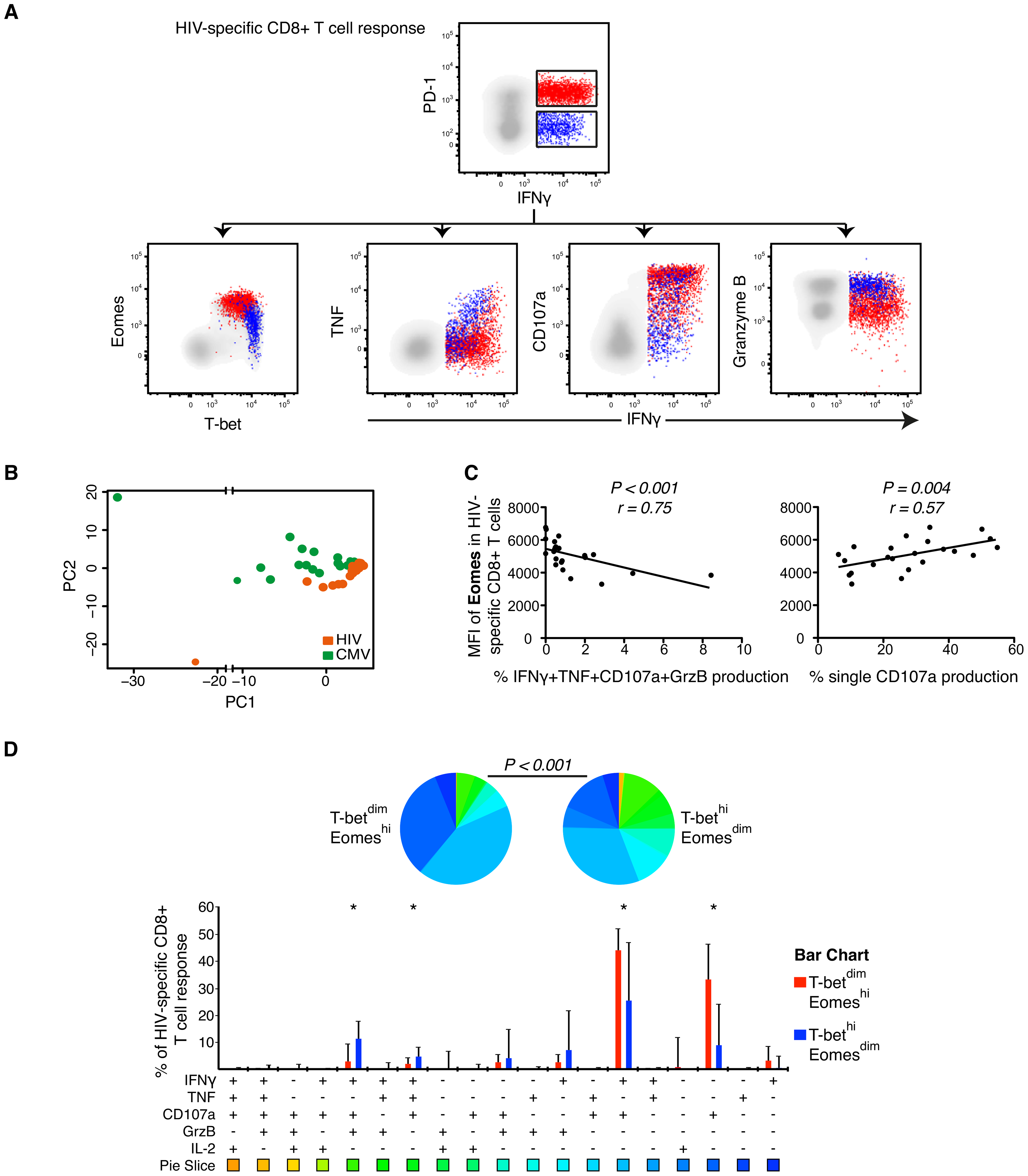 Polyfunctional characterization of virus-specific CD8+ T cells in untreated HIV-infected individuals.