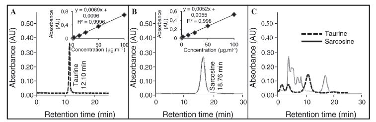 Fig. 3. Chromatograms of taurine and sarcosine, carried out using analyses, optimized for decrease of separation time of individual analytes. Chromatograms of standards of (A) taurine (10 μg/mL) and (B) sarcosine (10 μg/mL), obtained on ionexchange chromatography with Vis detector. Inserted are shown their calibration curves (0.6 - 100 μg/mL). (C) Overlay of chromatograms of taurine and sarcosine, resulted from analysis of chosen real urinary sample, obtained by patients suffering from prostate carcinoma.