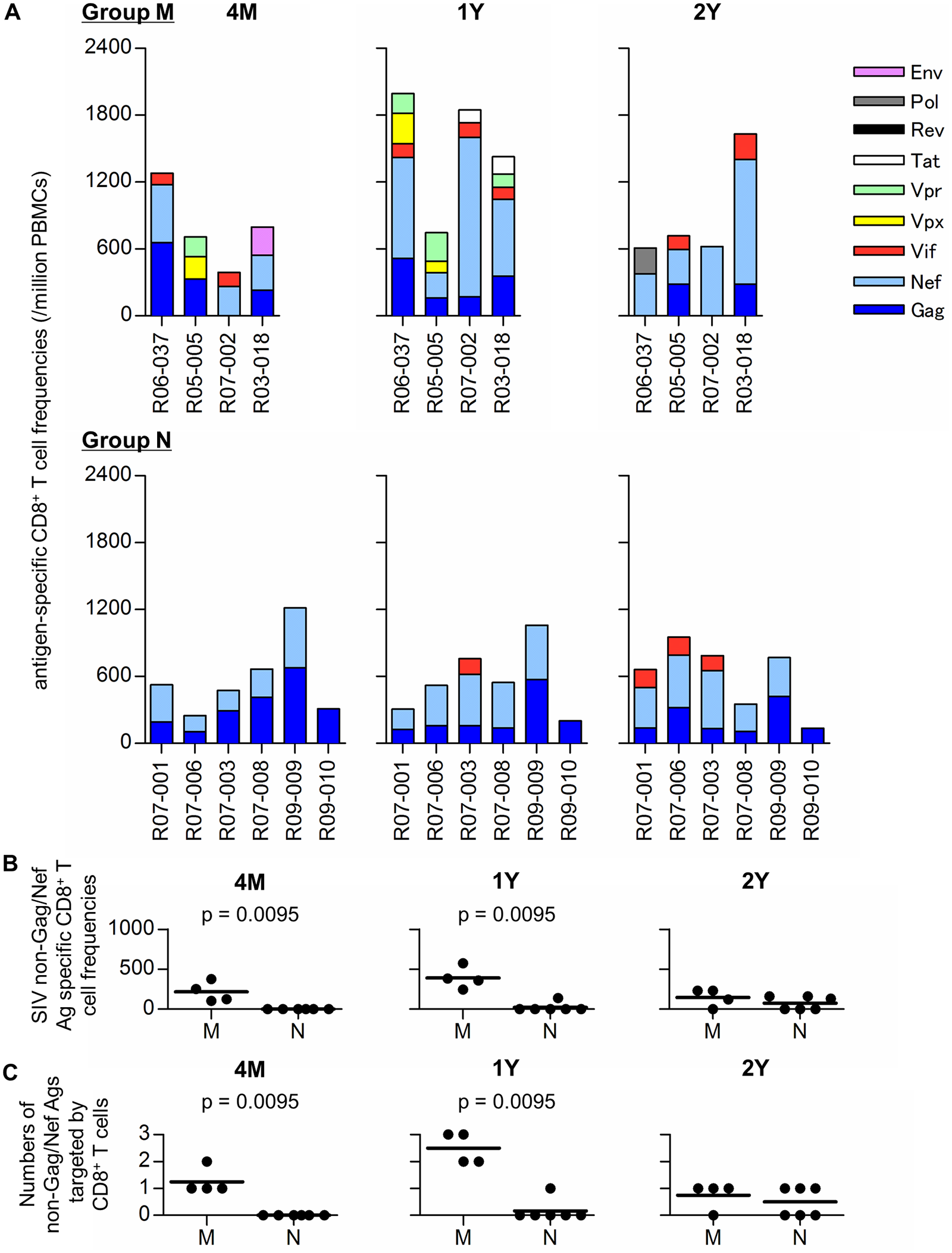 SIV antigen-specific CD8<sup>+</sup> T-cell responses in SIV controllers.