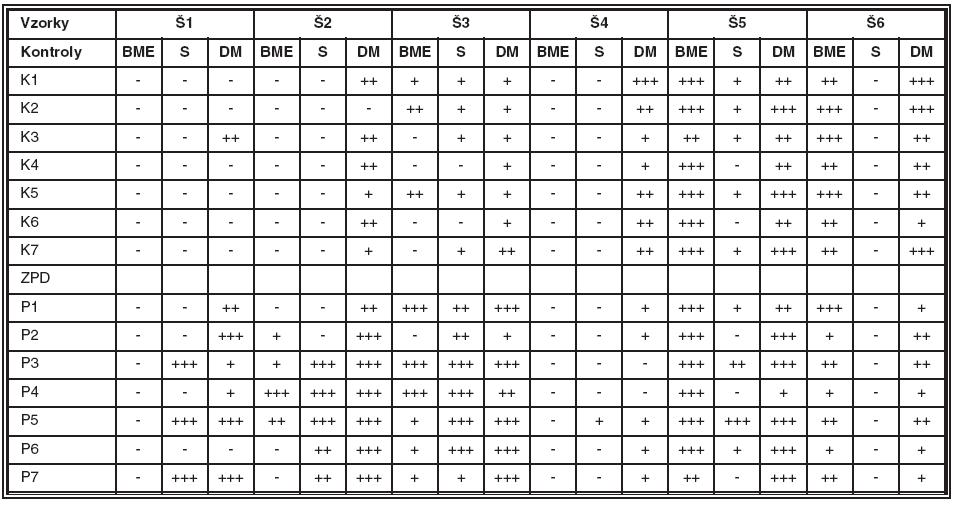 Prítomnosť reťazcov Š kolagénu IV v bazálnej membráne epitelu (BME), v strome (S) a v  escemetovej membráne (DM) zdravých rohoviek (K) a rohoviek pacientov so ZPD (P)
