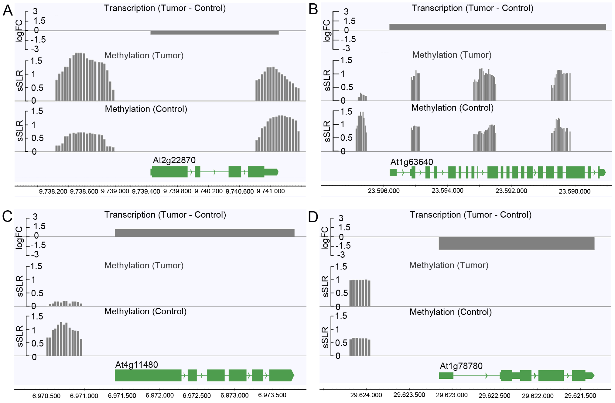 Differences in the degree of methylation in upstream regions correlate with differential transcription.