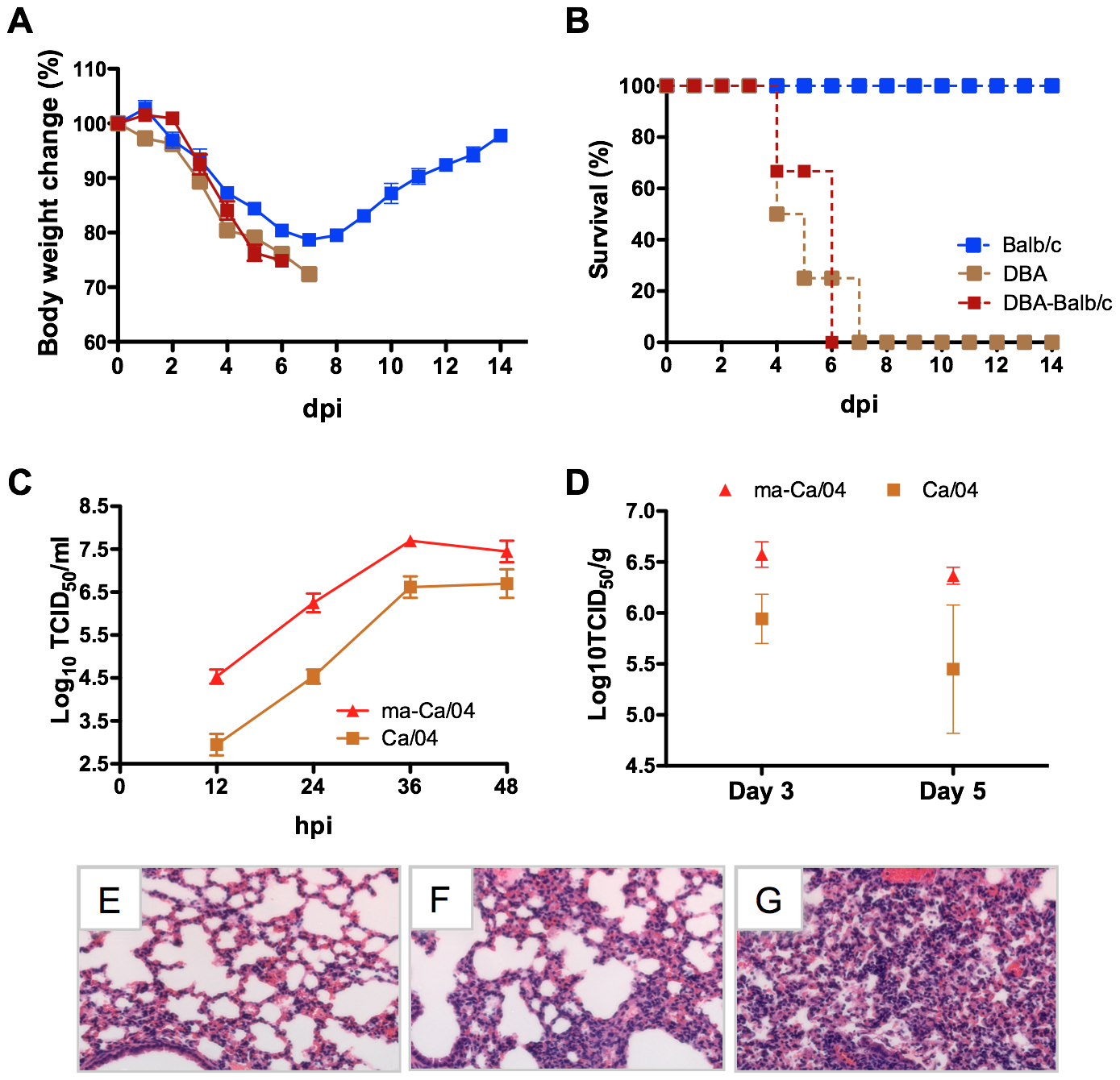 Generation of an H1N1pdm virus lethal for Balb/c mice.