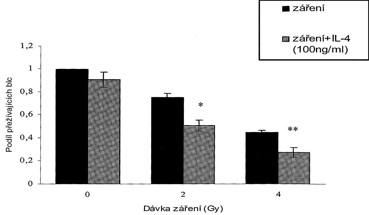 IL-4 (100 ng/ml) samotný bez záření snížil klonogenní růst buněk SW620 pouze mírně, bez statistické signifikance. Avšak v kombinaci se zářením IL-4 statisticky signifikantně potencoval inhibici klonogenního růstu vyvolanou radiací (*p < 0,05: 2 Gy versus 2 Gy+IL-4; **p < 0,05: 4 Gy versus 4 Gy+IL-4). Pic. 2. Cell proliferation potential monitoring showed that cultivation with various IL concentrations (A) 1 ng/ml, (B) 10 ng/ml, (C) 100 ng/ml , resulted in a minor inhibition of cell proliferation, which was statistically insignificant. A dose of 8 Gy resulted in a statistically significant inhibition of cell proliferation (*p<0.05), compared to a control. Combination of IL-4 and radiation facilitated the cell proliferation rate inhibition (*p<0.05: shows a statistical significance compared to the control). (C) The highest of the tested IL-4 concentrations (100 ng/ml) resulted in a statistically significant potentiation of the radiation ihibitive effect, compared to the group with radiation only (**p<0.05).