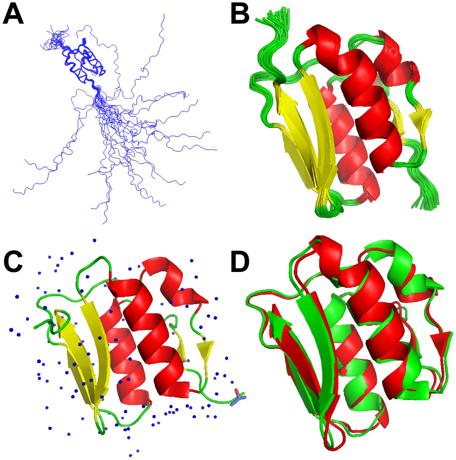 NMR and X-ray models of VirB7<sub>XAC2622</sub>.