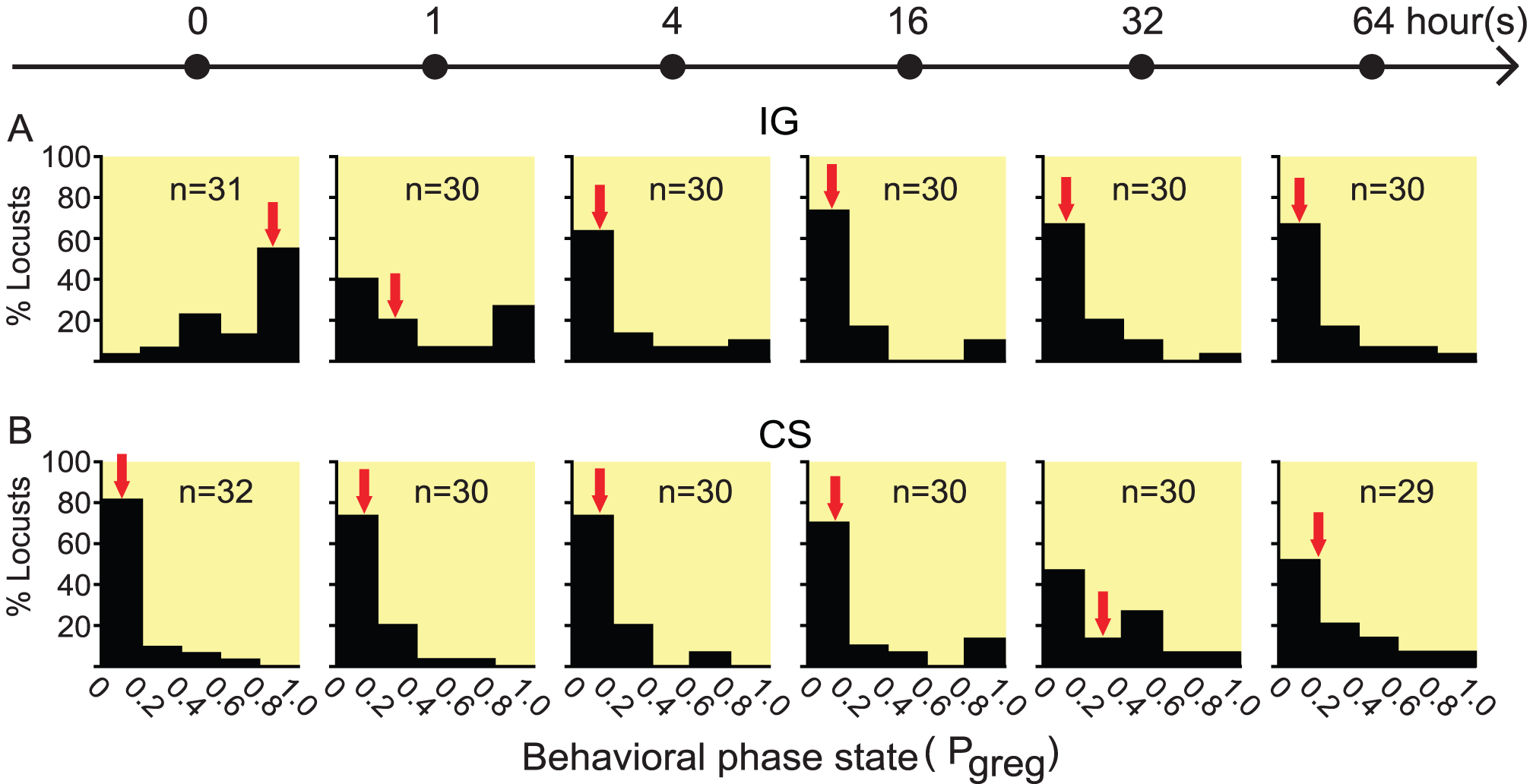 The time course of behavioral phase change in fourth-instar nymphs of <i>Locusta migratoria</i>.