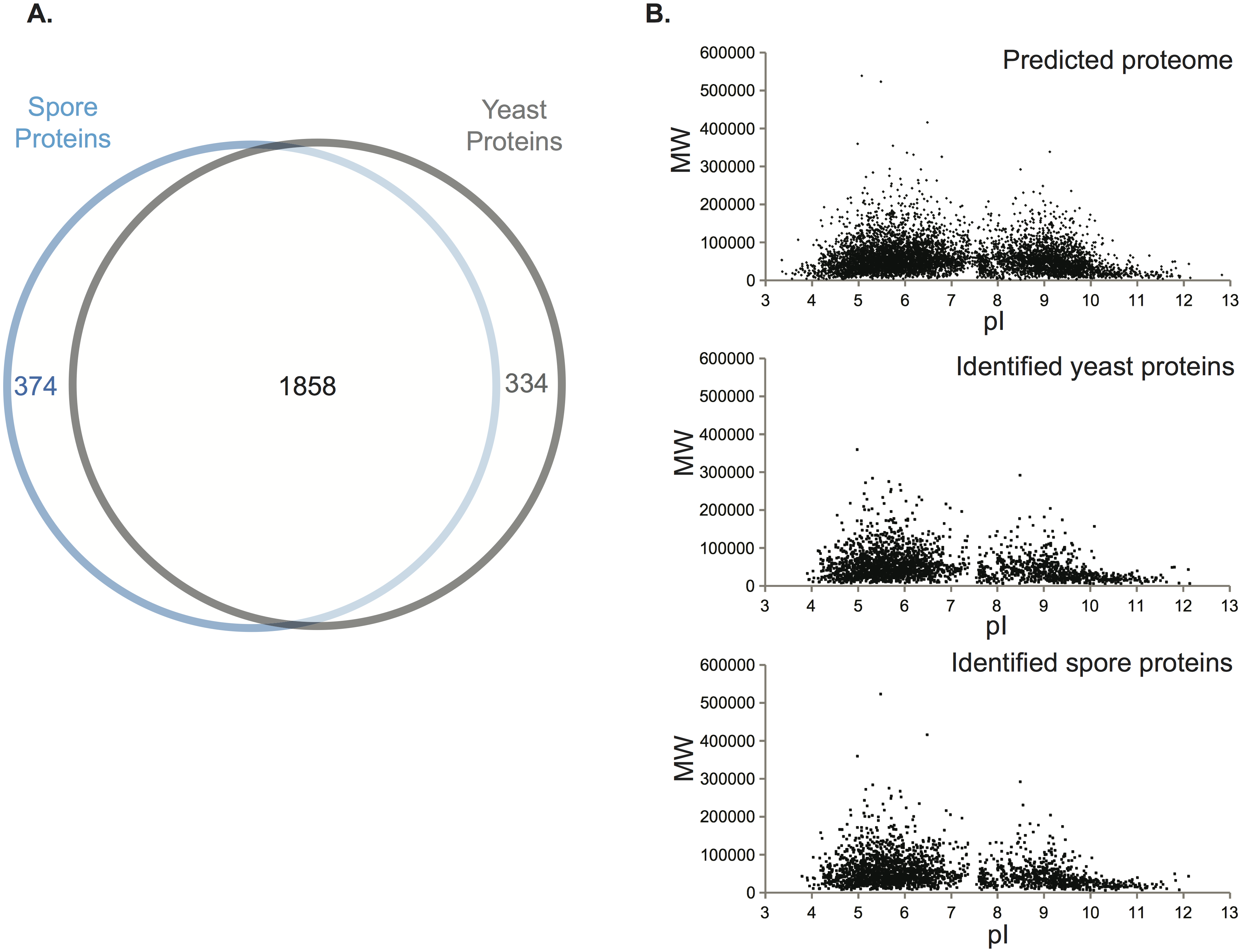 Assessment of the proteomic data.