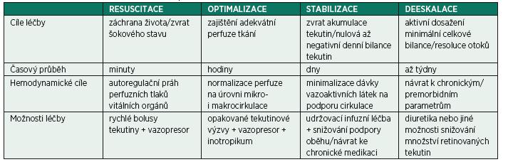 Fáze tekutinové/hemodynamické terapie