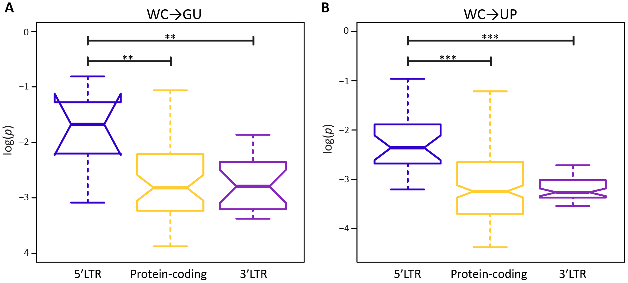 Intra-population frequencies of single-site WC replacement polymorphisms in 5′LTR, protein-coding, and 3′LTR regions of the HIV-1 genome.