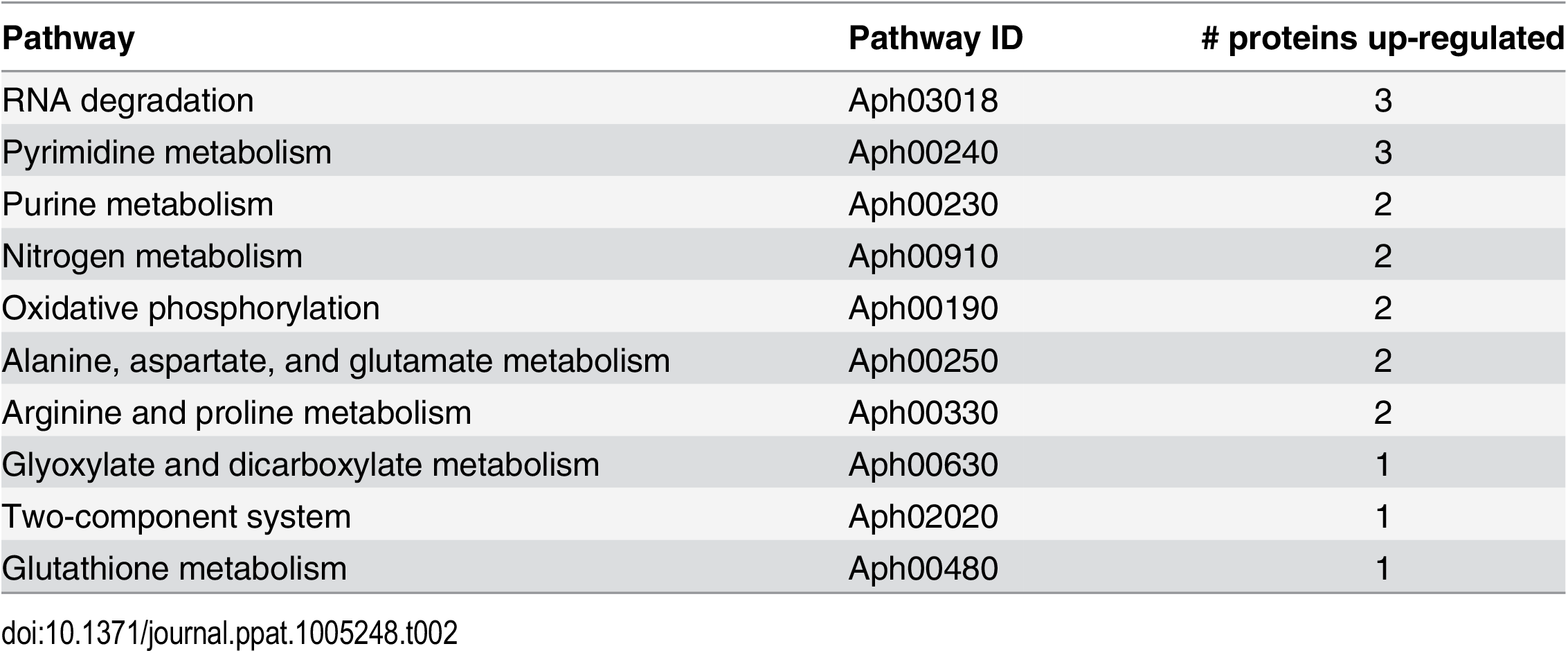 Pathways that are altered in ΔOMT during binding to and internalization into ISE6 cells.