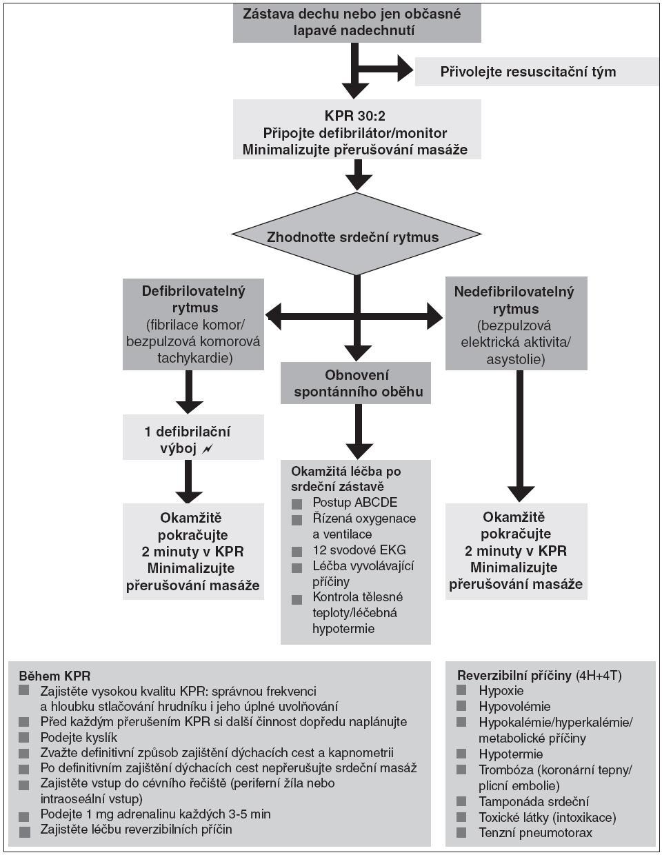 Obr. 5. Univerzální algoritmus rozšířené neodkladné resuscitace (oficiální překlad algoritmu ERC [2, 7], Česká resuscitační rada, 2010)