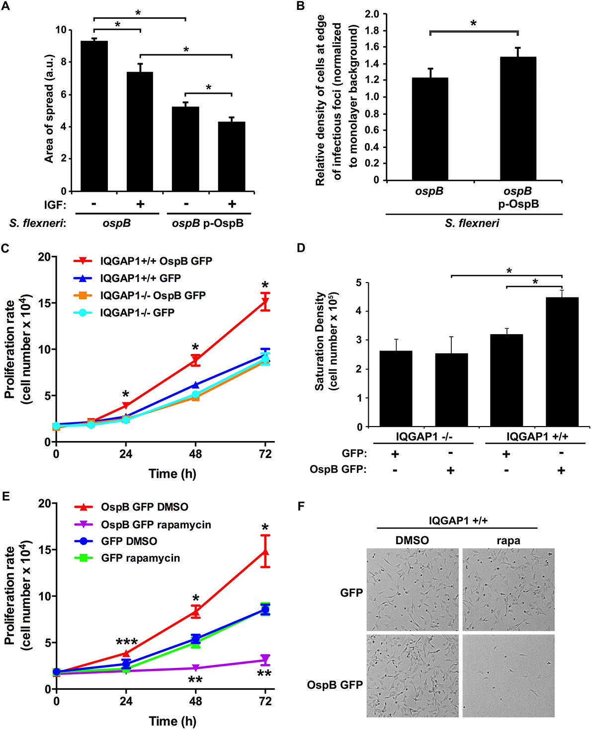 OspB enhances cell proliferation dependent on IQGAP1 and inhibited by rapamycin.