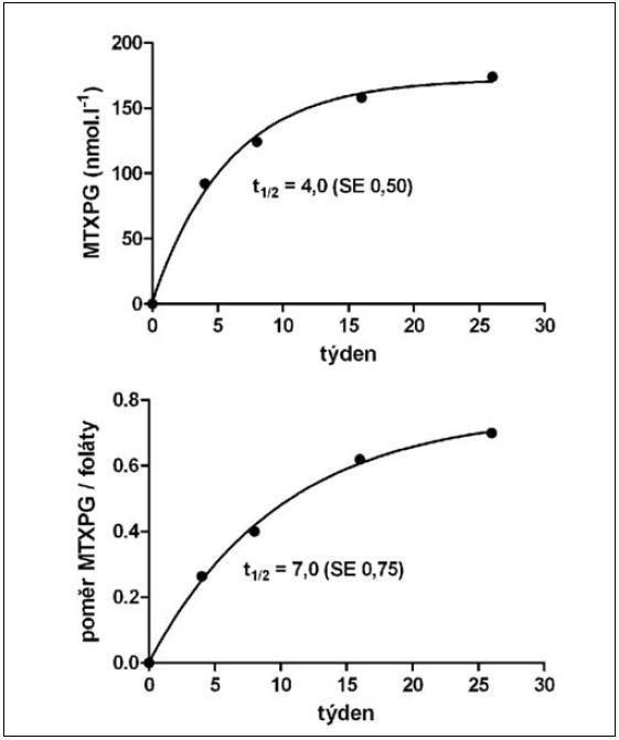 Geometrické průměry koncentrace polyglutamátů metotrexátu v erytrocytech (MTXPG, nahoře) a jejího poměru ke koncentraci folátů v krvi (MTXPG/foláty, dole) Nárůst hodnot probíhal podle kinetiky prvního řádu s poločasem 4 (MTXPG) a 7 týdnů (MTXPG/foláty). SE – standardní chyba odhadu